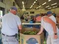 18-Aug-23-Corn-Processing05